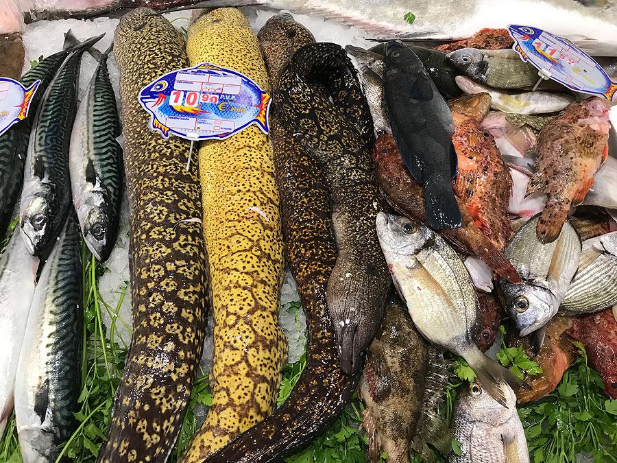 pescados-oliver